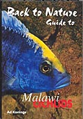 Back to Nature - Malawicichlids